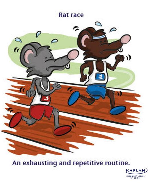 IDIOMS: The rat race