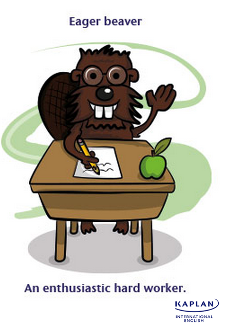 IDIOMS: Eager beaver