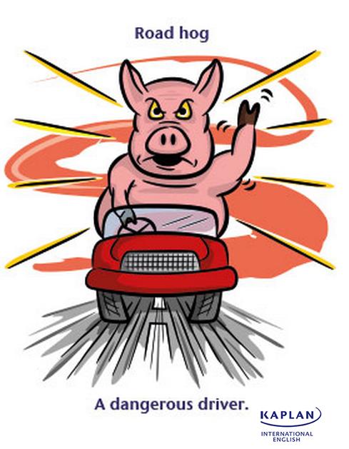 IDIOMS: Road hog