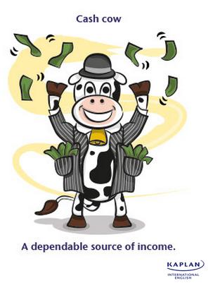 IDIOMS: Cash cow