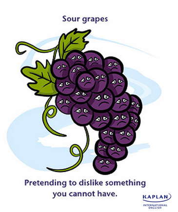 sour grapes Synonyms for sour grapes at thesauruscom with free online thesaurus, antonyms, and definitions dictionary and word of the day.