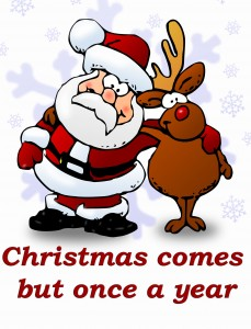 Idioms: Christmas comes but once a year
