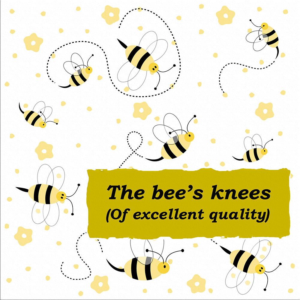 Idioms: The bee's knees