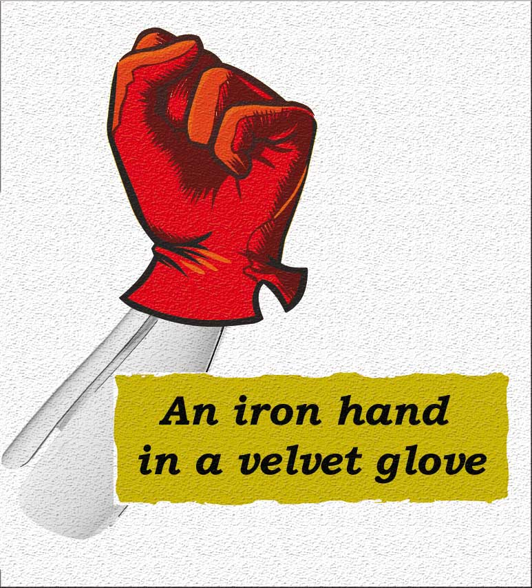 Idioms: An iron hand in a velvet glove