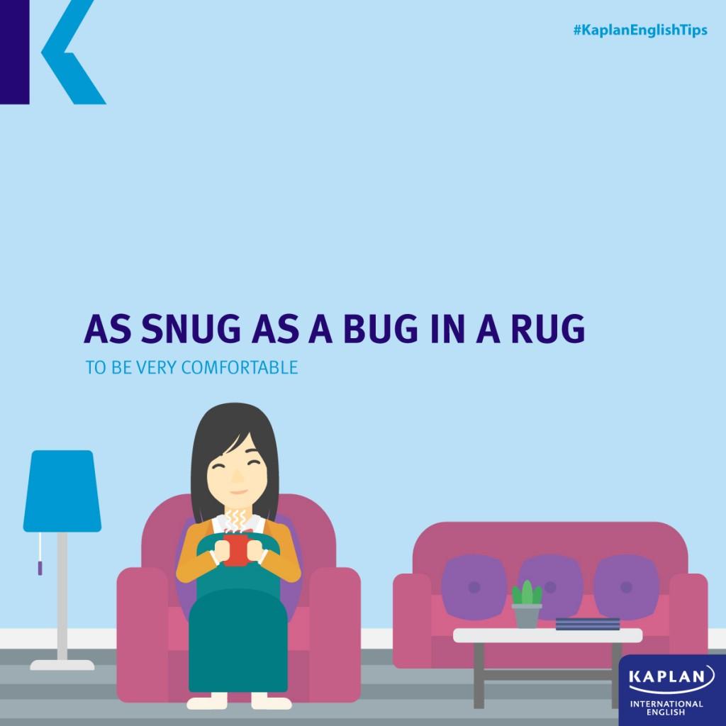 Idioms: As snug as a bug in a rug