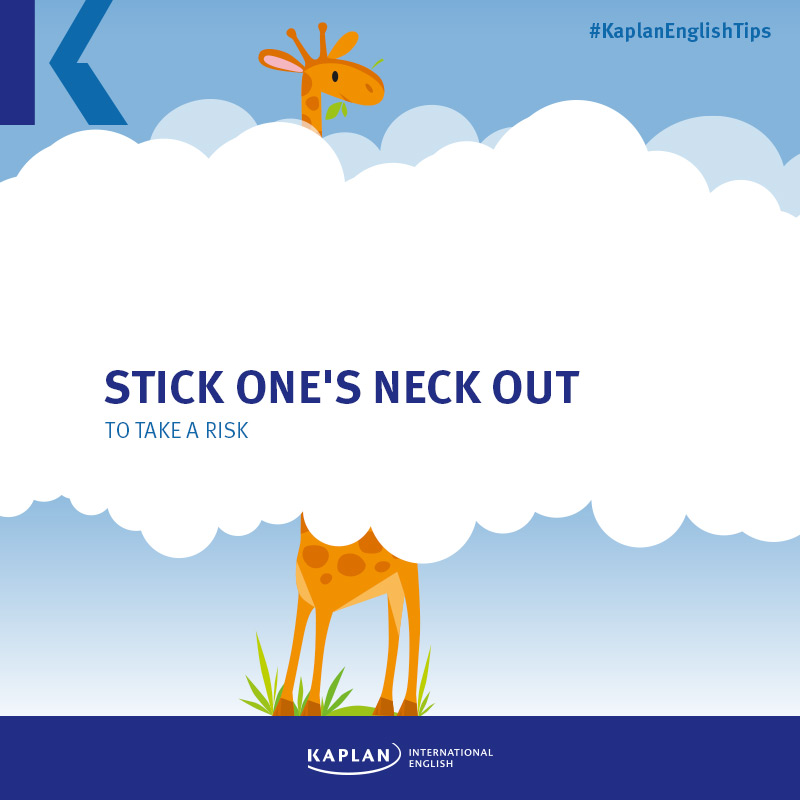 Idioms: To stick one's neck out