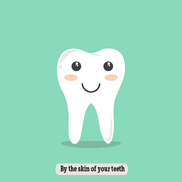 Idioms: By the skin of your teeth