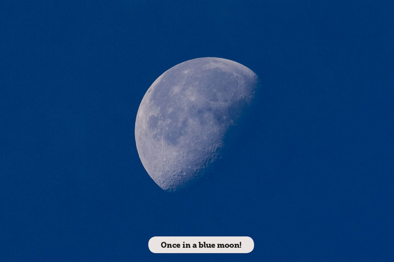Idioms: Once in a blue moon!
