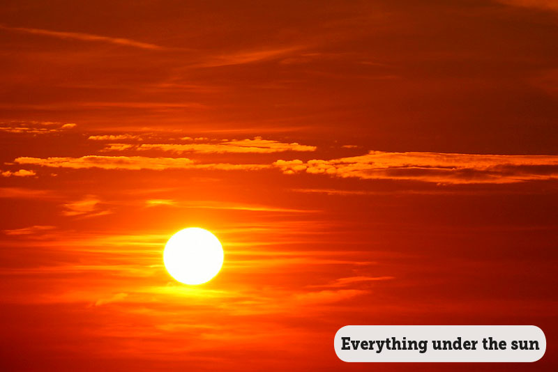 Idioms: Everything under the sun