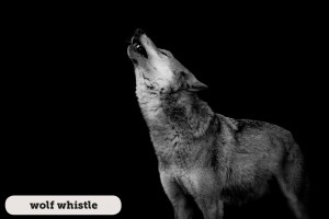 Idioms: Wolf whistle