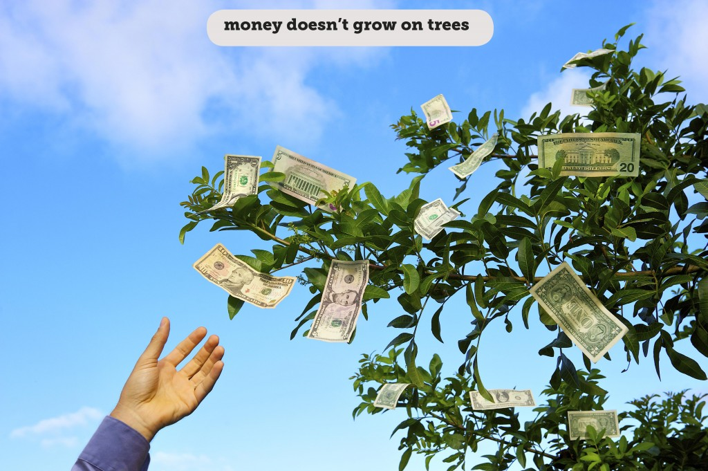 Idioms: Money doesn't grow on trees