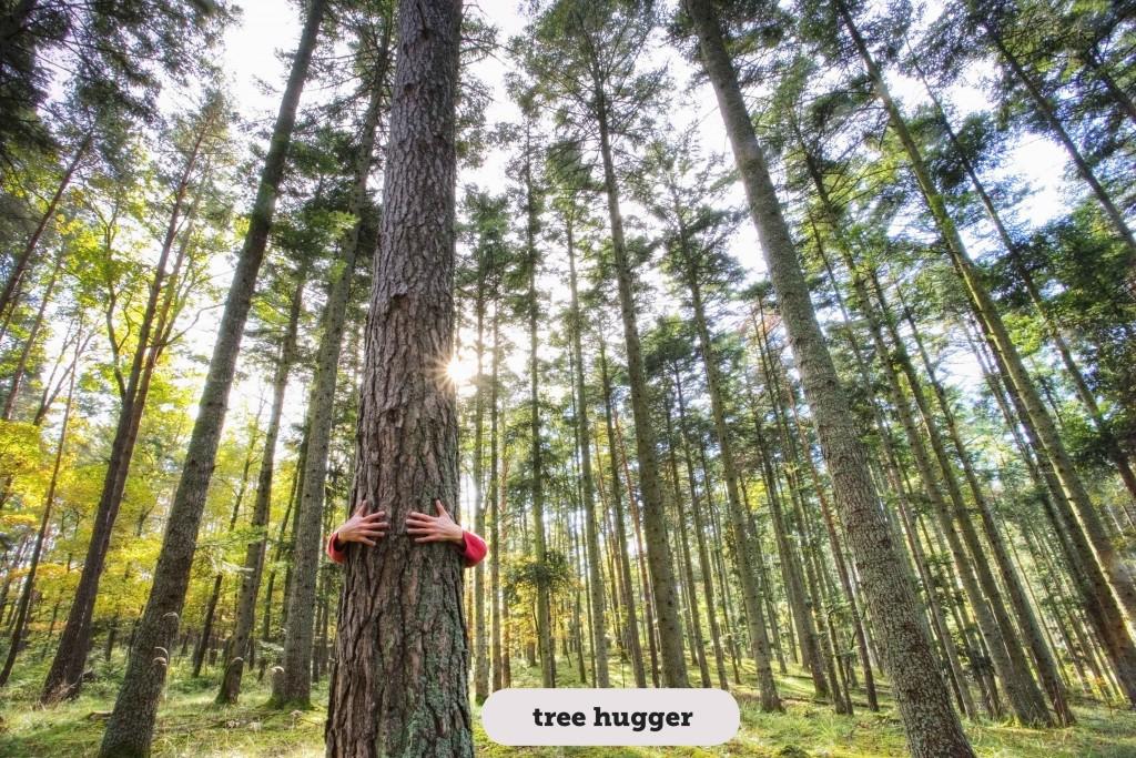 Idioms: Tree hugger