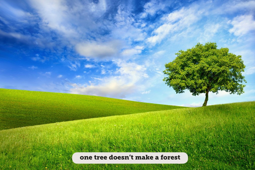 Idioms: One tree doesn't make a forest