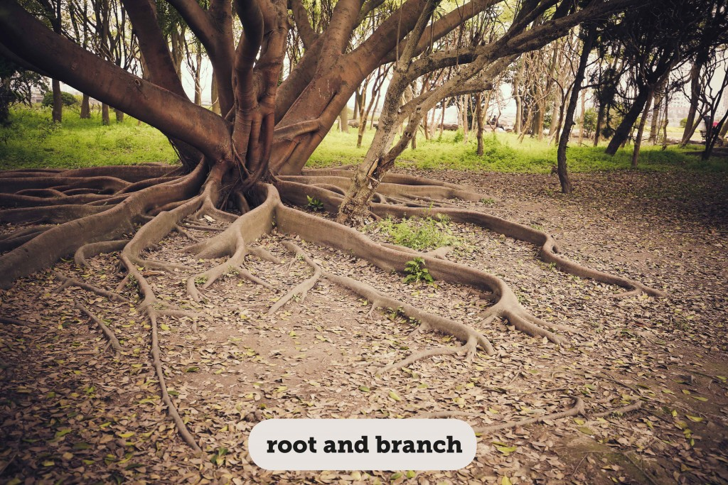 Idioms: Root and branch