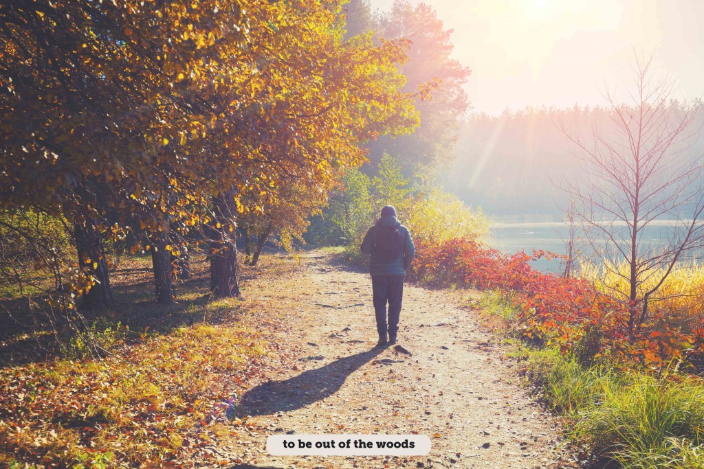 Idioms: To be out of the woods