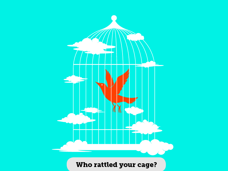 Idioms: Who rattled your cage?