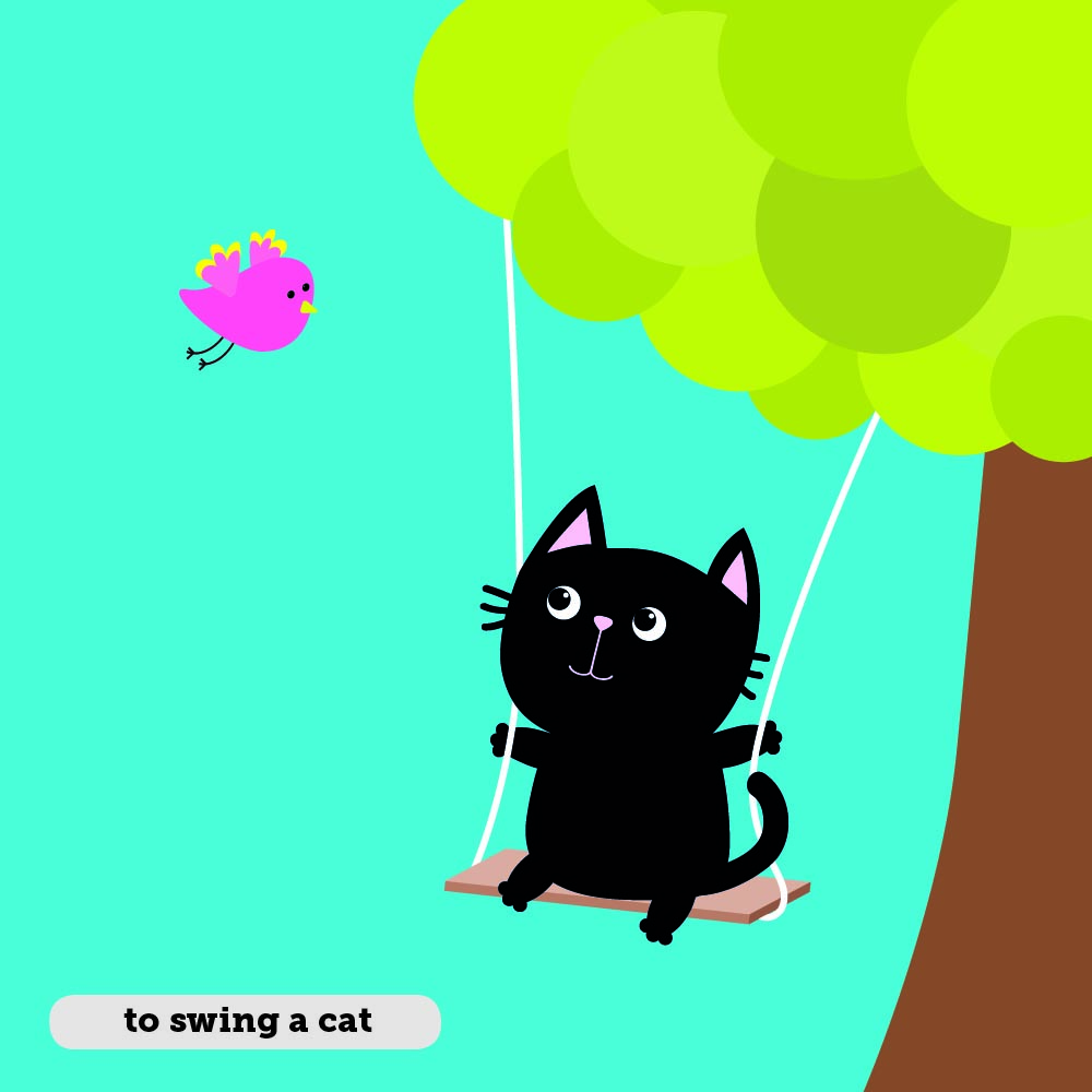 Idioms: To swing a cat