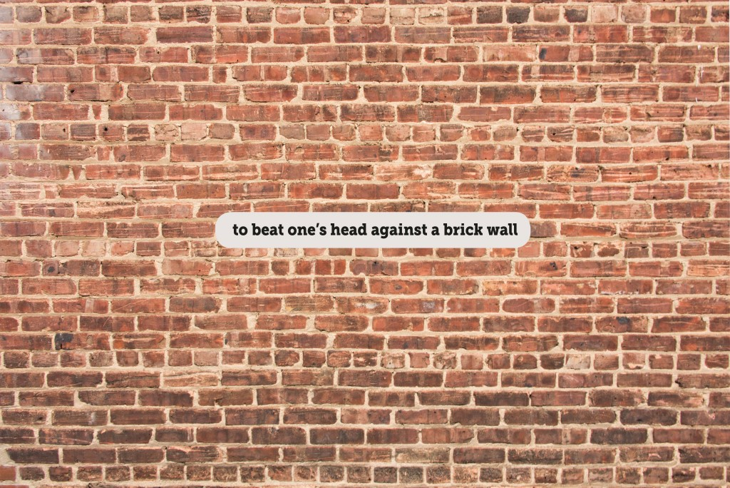 IDIOMS: TO BEAT ONE'S HEAD AGAINST A BRICK WALL