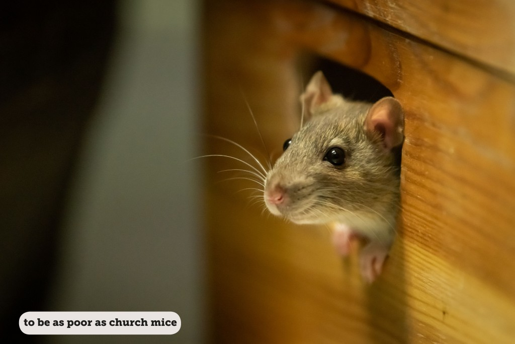IDIOMS: TO BE AS POOR AS CHURCH MICE