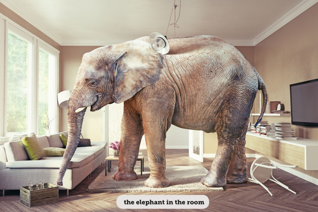 IDIOMS: THE ELEPHANT IN THE ROOM